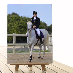 Tableau photo aluminium grand format photo cheval