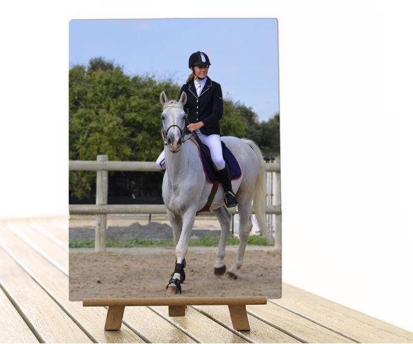 Tableau photo aluminium grand format photo cheval