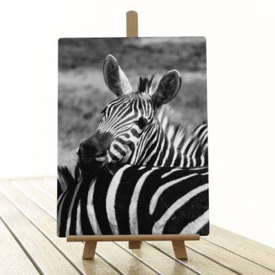 Tirage photo sur aluminium par sublimation