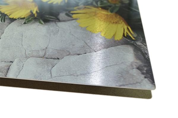 Impression photo sur aluminium brossé