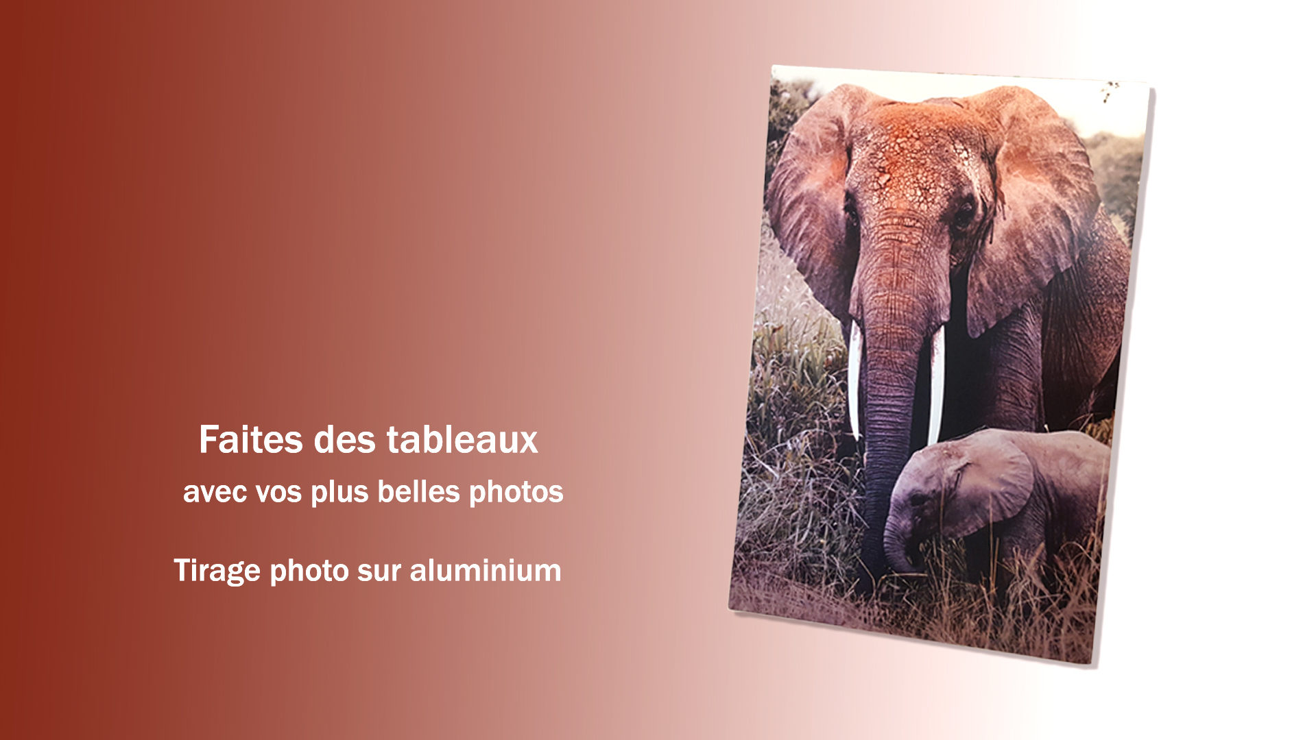 Tableaux photo sur aluminium ChromaLuxe