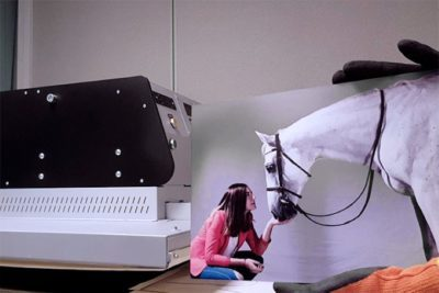 shooting photo cheval - Impresion sur aluminium a Aix en Provence